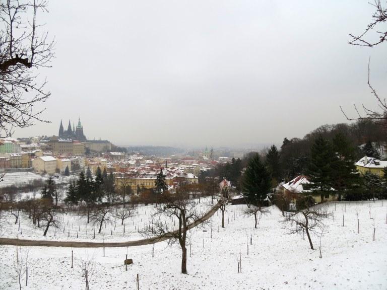 la vista del parque